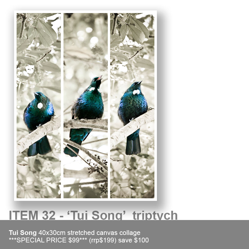 item-32-tui-song-triptych.jpg