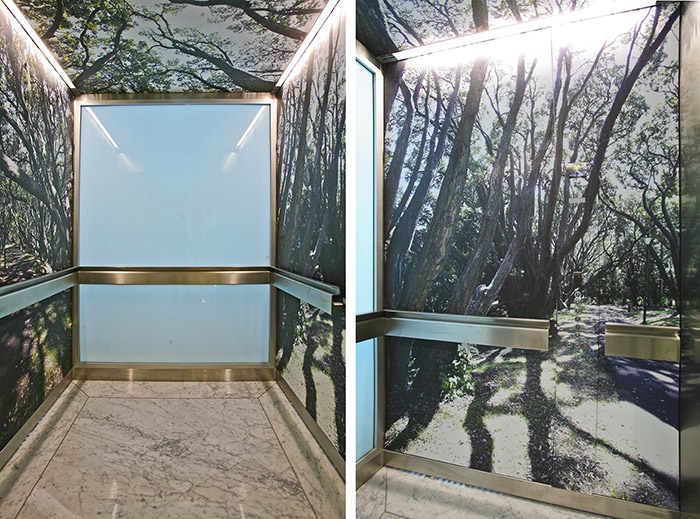 Printed tree wall vinyl in lift shaft of commercial building